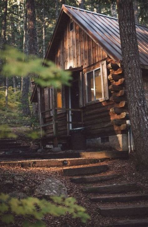 C Wood Cabins by Tranquil Log Cabin In The Woods Cabin For Roses