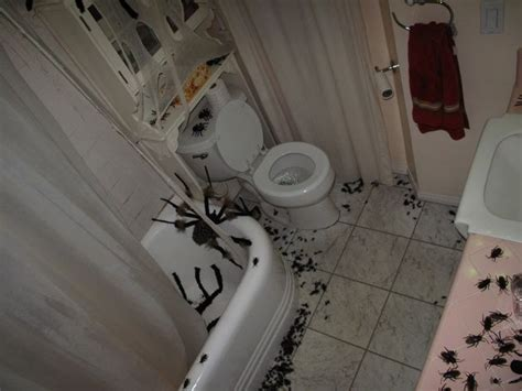 halloween bathroom decorating ideas 207 best images about halloween bathroom decor on