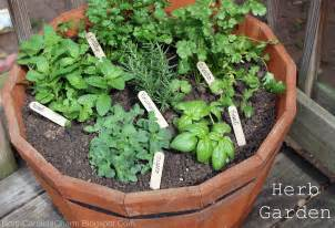 herb gardens carolina charm diy herb garden