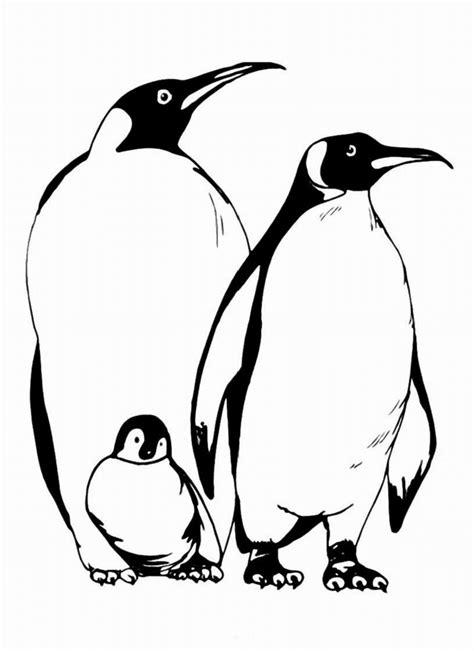 Gambar Mewarnai Pinguin Untuk Anak PAUD dan TK | Mewarnai