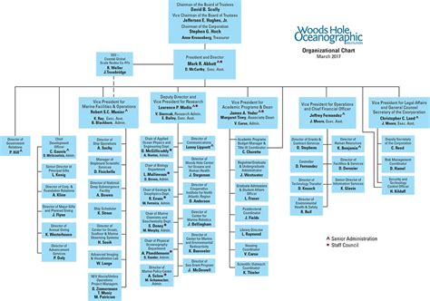 org charts organization chart www pixshark images galleries