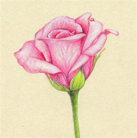 Beautiful Color Pencil Drawings Great Inspire Colored Drawings