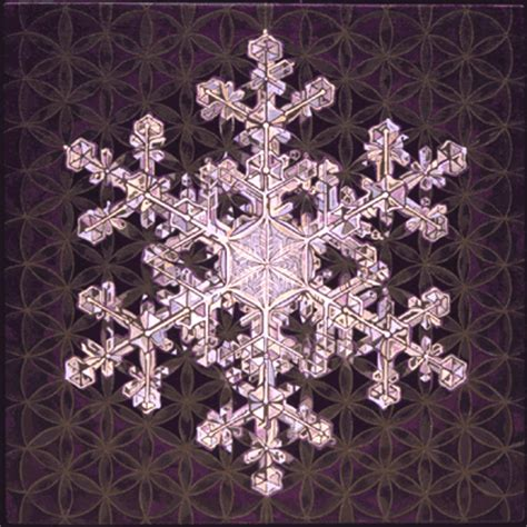 flower of life pattern in nature sacred geometry images in nature
