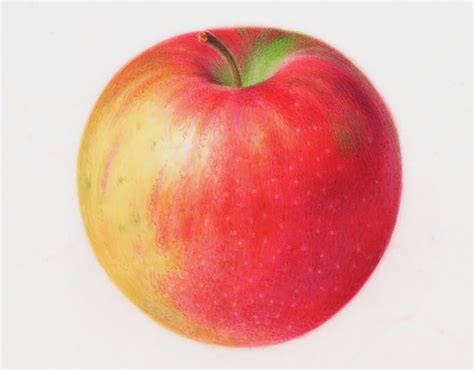 painting for mac painting watercolor apple