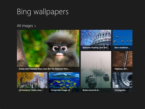 bing wallpaper windows phone 8 bing wallpapers for windows 8