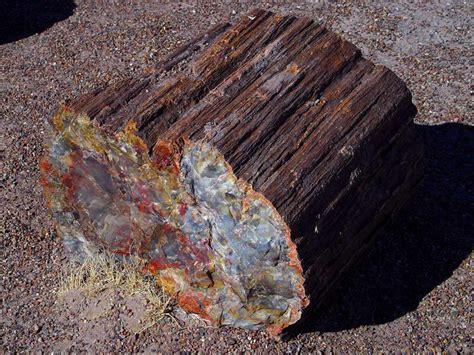 rockhounding on lands oregon washington blm