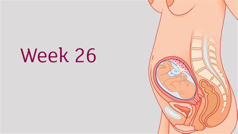 Babymed Pregnancy Calendar Pregnancy Fertility Calculators Calendars By Babymed