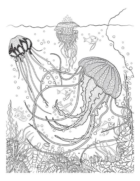coloring pages for adults underwater 376 best coloring pages to print underwater images on