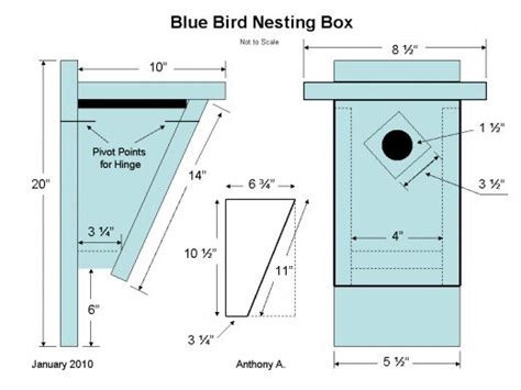 bluebird nest box plans how to build a peterson bluebird