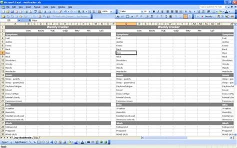 medication spreadsheet template medication tracker medication tracker spreadsheet