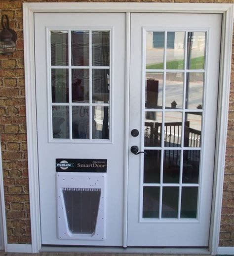 Exterior Doors With Pet Door Glass Door 20 Ways To Make To Make The Of Your Pets Easier And Safety Interior