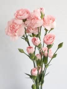 Send Flowers To Las Vegas - bouquet free download clip art free clip art on