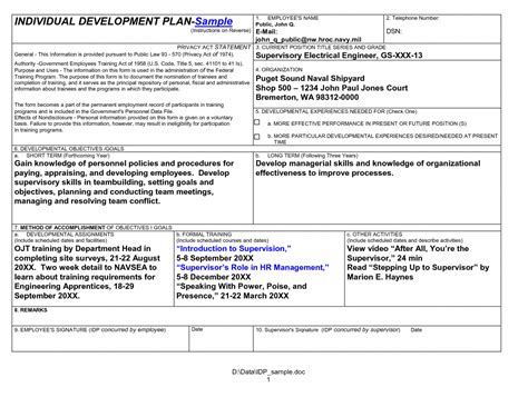 personal business plan template personal development plan template invoice receipt
