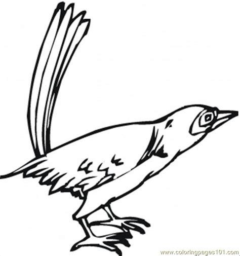 california bird coloring page california bird coloring page free usa coloring pages