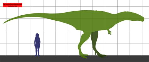 how to measure girth file tyrannotitan size png wikimedia commons