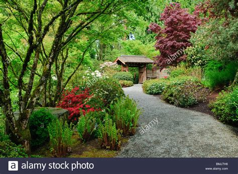 Yao Japanese Garden At Bellevue Botanical Gardens Botanical Garden Bellevue