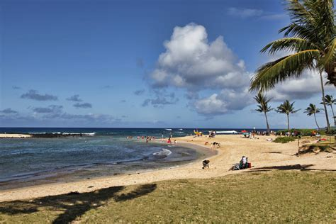 kauai boat tours in december whale watching on kaua i suite paradise