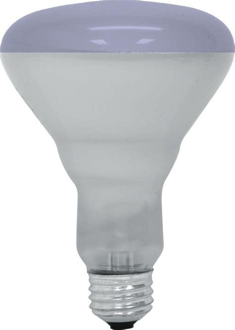 light bulbs good for plants 5 best grow light bulbs good for plant s growth tool box