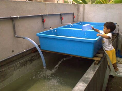 grow bed the types of aquaponics grow bed