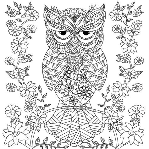 coloring pages for adults owls 17 beste afbeeldingen kleurplaten op