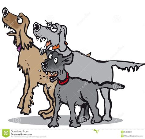 puppy yelping three dogs barking stock photography image 34048012