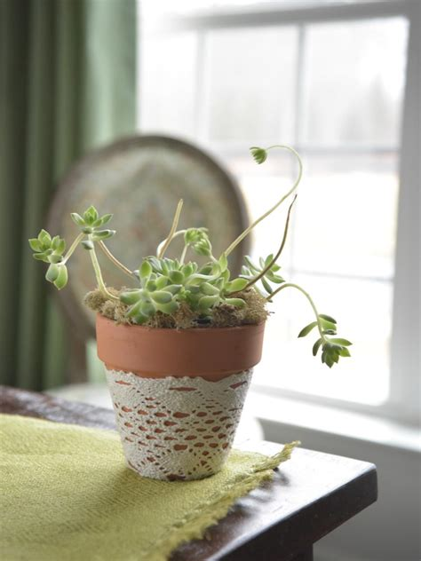 terra cotta pot crafts hgtv