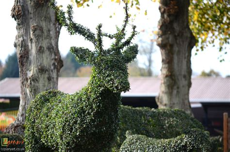 Tuscan Houses information archives bespoke topiary plant sculptures