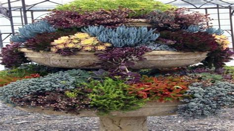 succulents garden ideas succulents garden ideas pots for succulent gardens