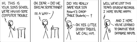 bobby tables a guide to preventing sql injection