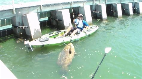 four men were fishing in a boat fishing rod big catch kayak video goliath grouper cape