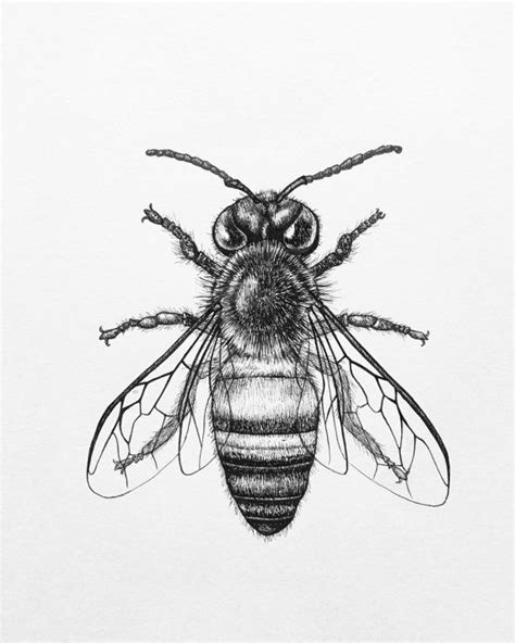 tattoo sketch pen the 25 best honey bee tattoo ideas on pinterest bee