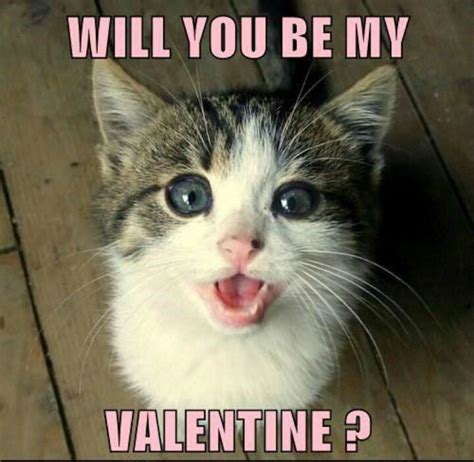 Will You Be My Valentine Meme - 20 cute and funny valentine s day memes sayingimages com