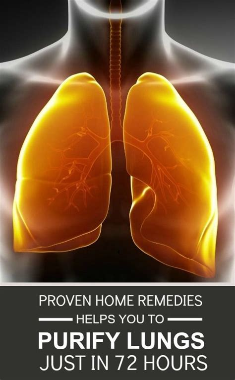 Respiratory Detox by Best 25 Lung Detox Ideas On Lung Cleanse