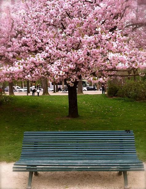 paris park bench park bench in paris i want to go to there pinterest