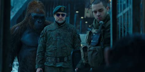 War For The Planet Of The Apes 2017 Dvd 8 reasons why war for the planet of the apes is the best sequel of 2017 so far 171 taste of