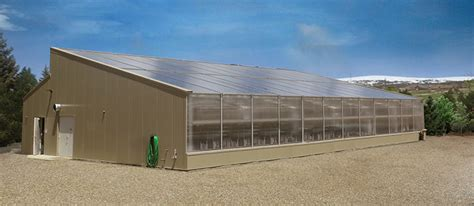 solar greenhouse design construction year  growing