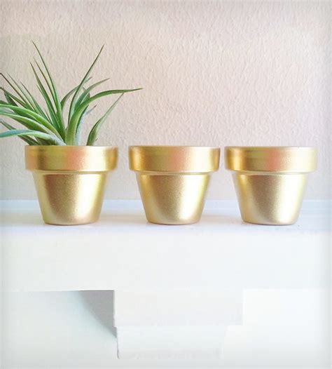 Mini Planters by Gold Mini Planters Indoor Pots And