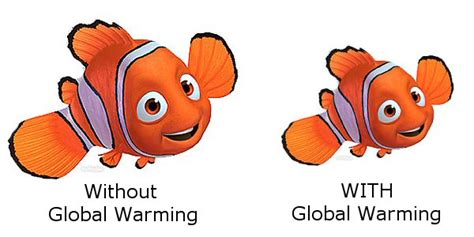 climate change could make fish shrink by up to 30 daily shrinking nemo global warming to make fish smaller