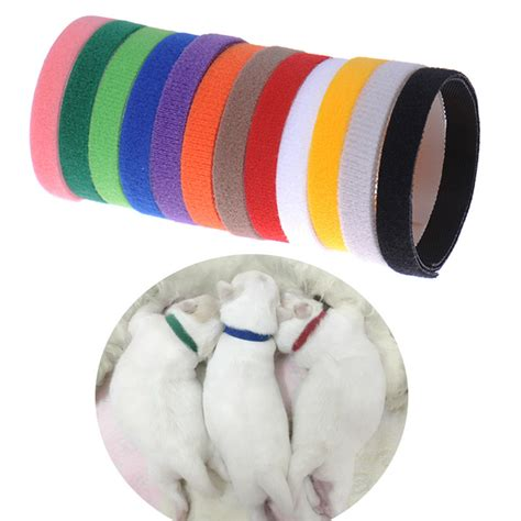 puppy whelping collars 12 whelping small pet collar id velcro soft adjustable reusable