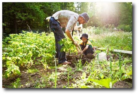 your own food organic gardening organic health