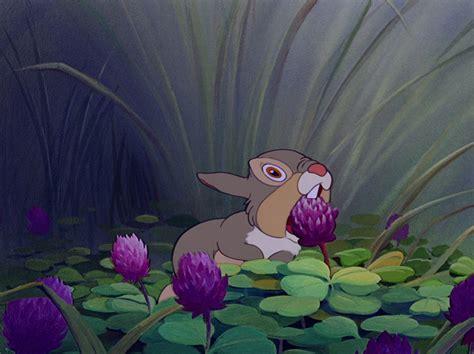 sleepy bunny the bunny who loved lavender books thumper burrello submarine s