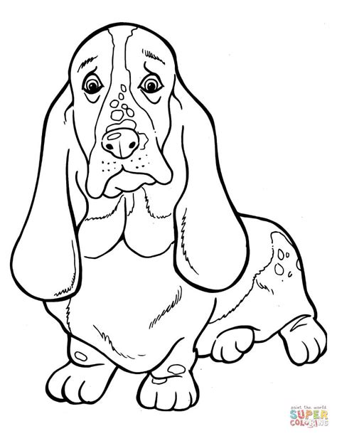coloring pages of bloodhounds basset hound coloring page free printable coloring pages