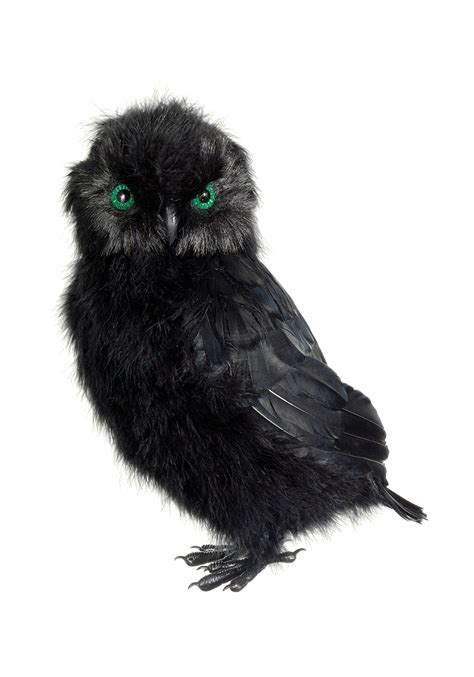 Pinterest Home Decorations by 14 Inch Black Owl