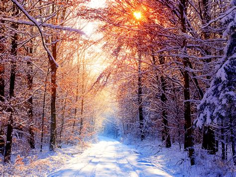 wallpaper desktop nature winter best wallpaper collection best winter wallpapers