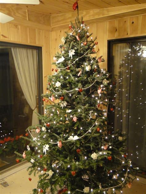 100 fraser christmas tree farm ri christmas tree