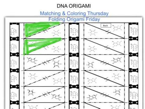 How To Make Dna Origami - dna origami coloring