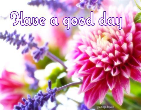 nice day  animated gifs quotes pics