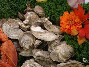 sintomi avvelenamento alimentare come curare l intossicazione alimentare russelmobley