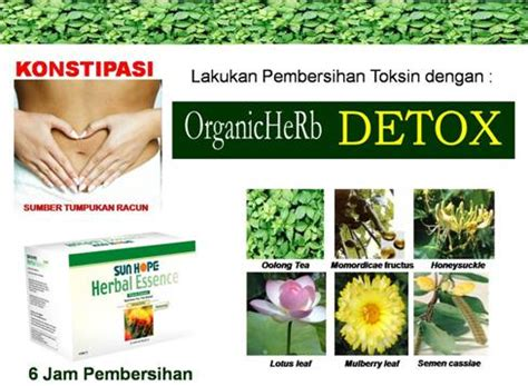 Produk Obat Herbal Alami Nature S Plus Iron Original Asli herbal esence sunhope nutrition