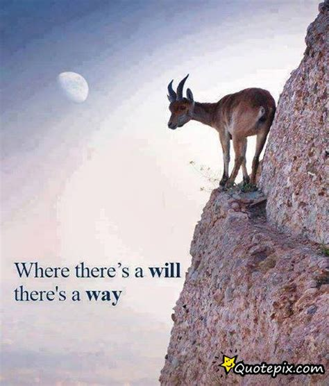 Where There S A Will where there s a will there s a way quotepix quotes